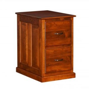 2- Drawer File Cabinet