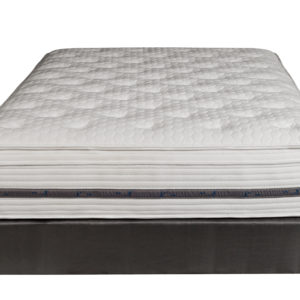 Paramount Sleep Back Performance PS Discovery Faux Euro Top