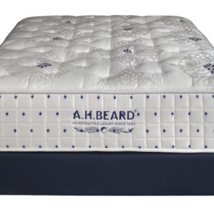 Paramount Sleep A.H. Beard Autograph Series Mackay Plush Navy